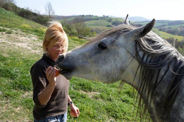 horse riding tuscany